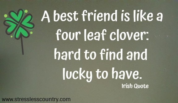 A best friend is like a four leaf clover: hard to find and lucky to have.  Irish Quote