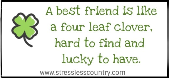A best friend is like a four leaf clover, hard to find and lucky to have.