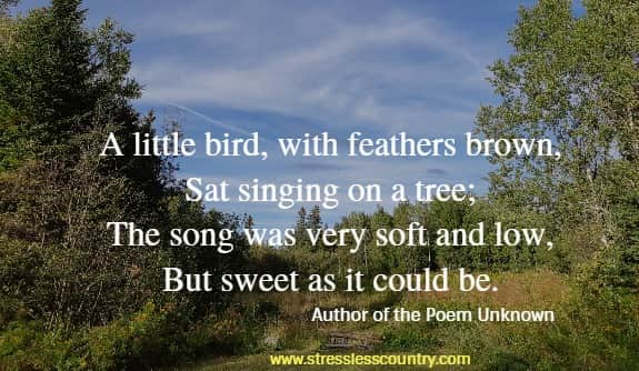 A little bird, with feathers brown, Sat singing on a tree; The song was very soft and low, But sweet as it could be. Author of the Poem Unknown