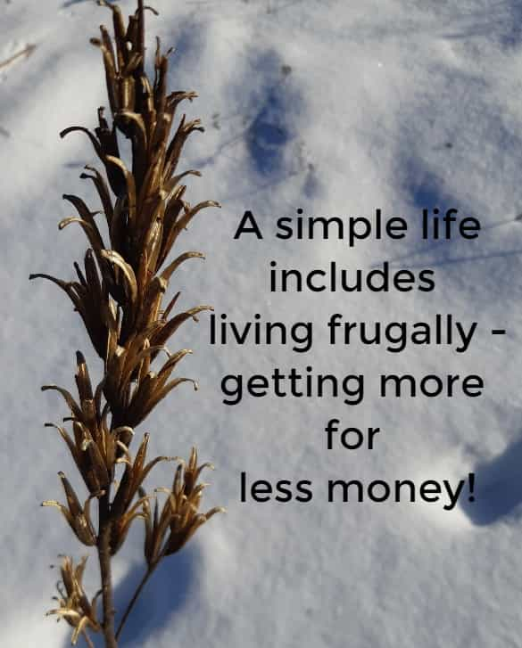 a simple life includes living frugally
