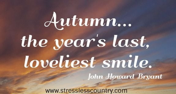 fall smiles quotes