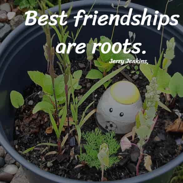 Best friendships are roots.