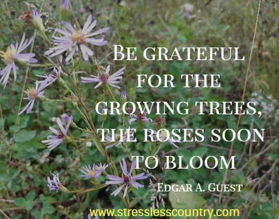 Be grateful for the growing trees, the roses soon to bloom   Edgar A. Guest