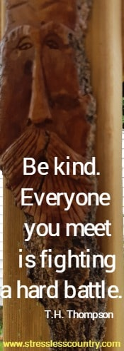 Be kind.  Everyone you meet is fighting a hard battle.