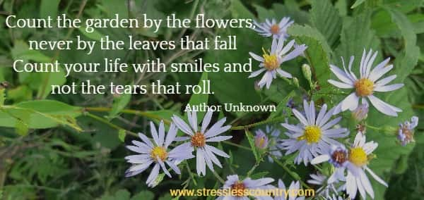 count the garden by the flowers....count your life with smiles