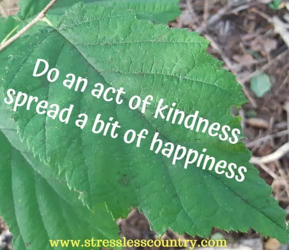 inspiring quotes about kindness