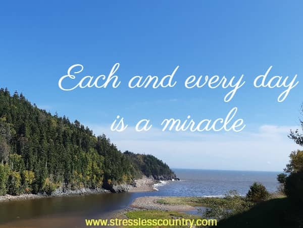thank God for the miracle of each and every day!