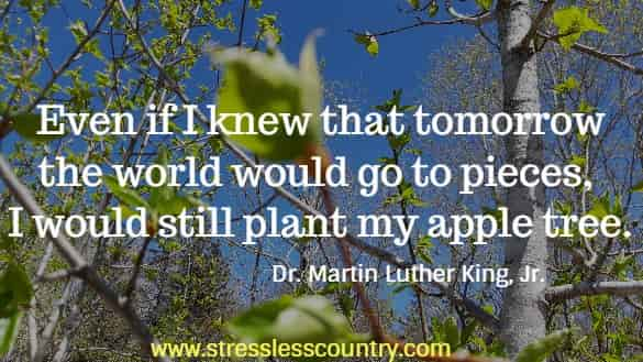 Even if I knew that tomorrow the world would go to pieces, I would still plant my apple tree.