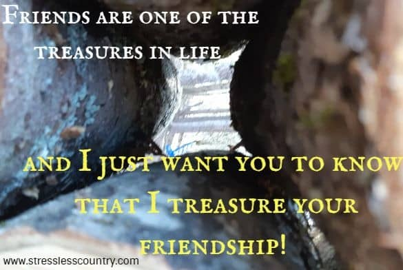 friends are one of the treasures