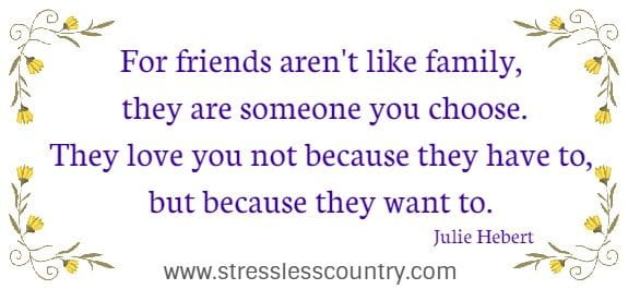 For friends aren't like family, they are someone you choose...