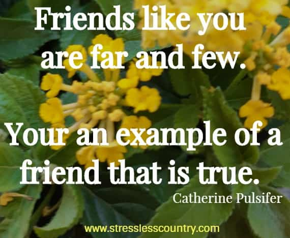 friendship quotes to share