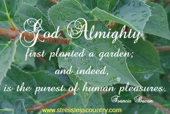 God Almighty first planted a garden; and indeed, it is the purest of human pleasures. Francis Bacon