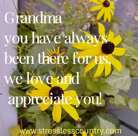 Grandma poems to express appreciation