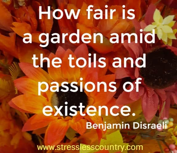 How fair is a garden amid the toils and passions of existence. Benjamin Disraeli