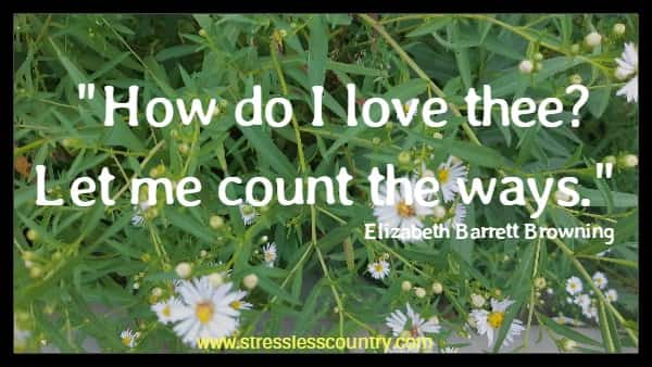 How do I love thee? Let me count the ways.  Elizabeth Barrett Browning