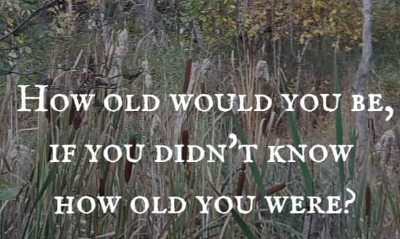 How old would you be, if you didn't know how old you were?