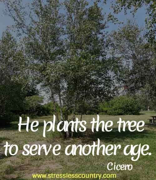 He plants the tree to serve another age.  Cicero