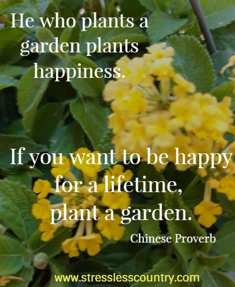 He who plants a garden plants happiness. If you want to be happy for a lifetime, plant a garden. Chinese Proverbs