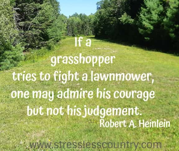 If a grasshopper tries to fight a lawnmower, one may admire his courage but not his judgement.   Robert A. Heinlein