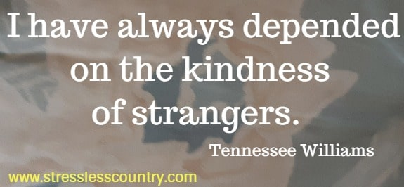 a quote about the power of kindness