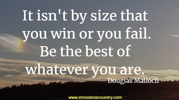 It isn't by size that you win or you fail. Be the best of whatever you are.