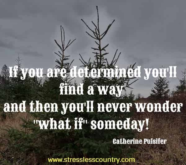 If you are determined you'll find a way and then you'll never wonder what if someday!