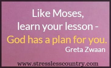 Like Moses, learn your lesson - God has a plan for 