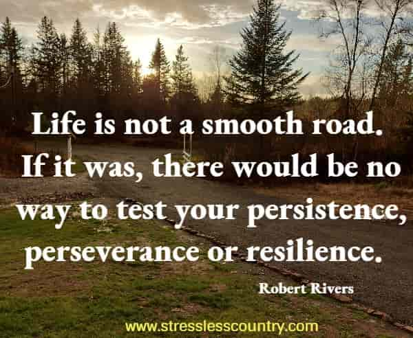 Life is not a smooth road. If it was, there would be no way to test your persistence, perseverance or resilience.