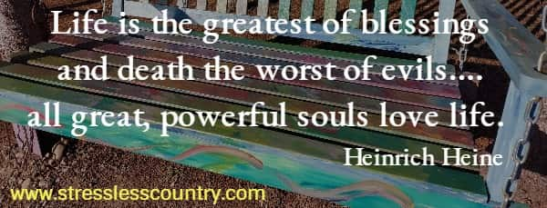 Life is the greatest of blessings and death the worst of evils.... all great, powerful souls love life.