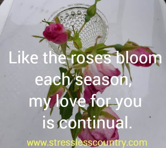Like the roses bloom each season, my love for you is continual.
