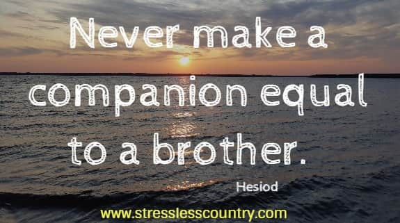 wise quotes about brothers