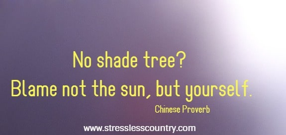 No shade tree? Blame not the sun, but yourself. Chinese Proverb