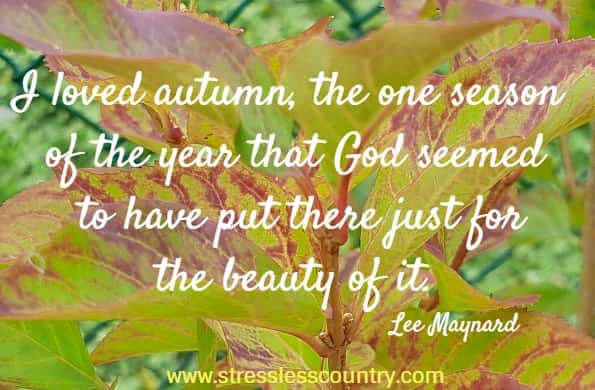 be inspired by these fall quotes