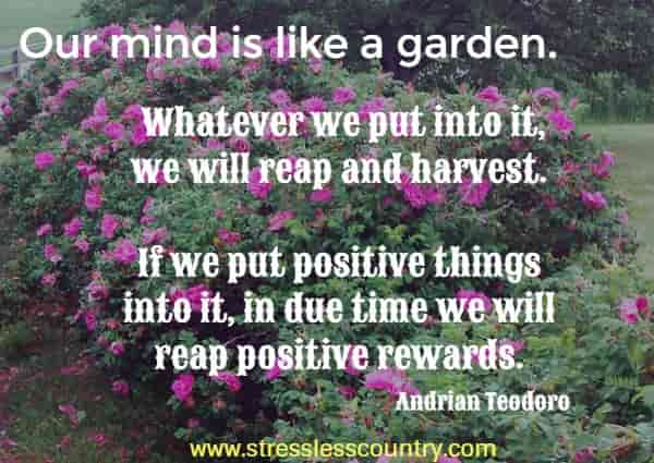 Our mind is like a garden. Whatever we put into it, we will reap and harvest. If we put positive things into it, in due time we will reap positive rewards.