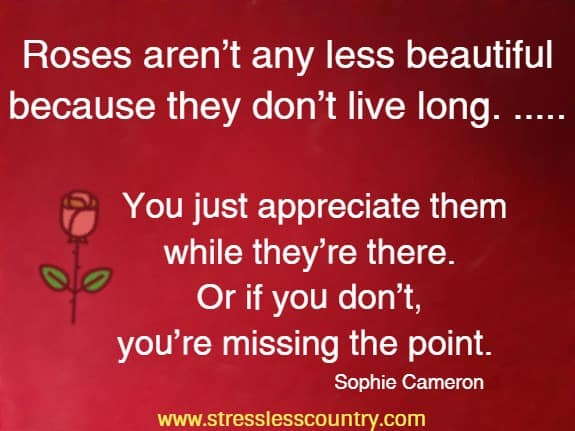 Roses aren't any less beautiful because they don't live long. ..... You just appreciate them while they're there. Or if you don't,  you're missing the point.  Sophie Cameron
