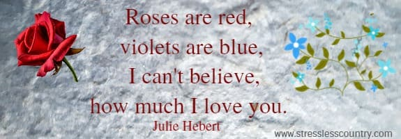 Roses are red, violets are blue,   I can't believe, how much I love you. Julie Hebert