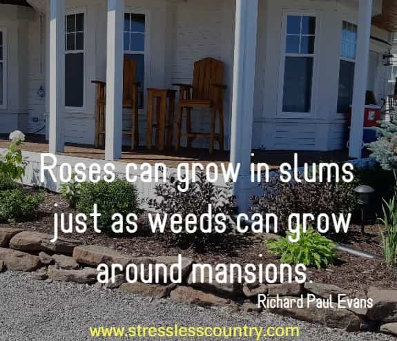 Roses can grow in slums just as weeds can grow around mansions.   Richard Paul Evans