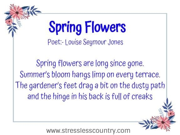 Spring Flowers