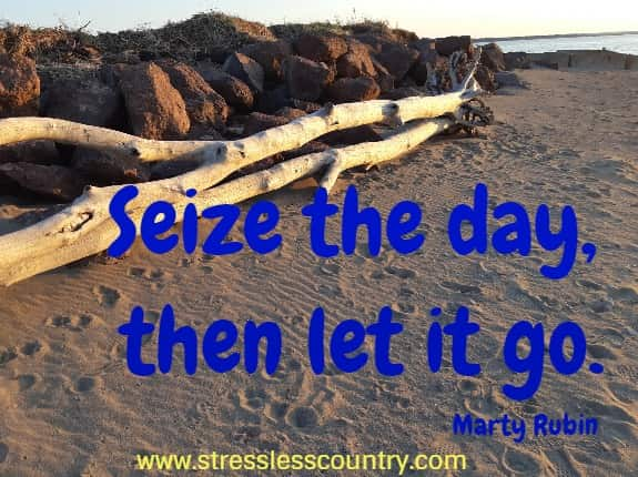 seize the day, then let it go.  Marty Rubin