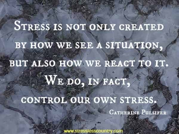 Stress is not only created by how we see a situation, but also how we react to it. We do, in fact, control our own stress.