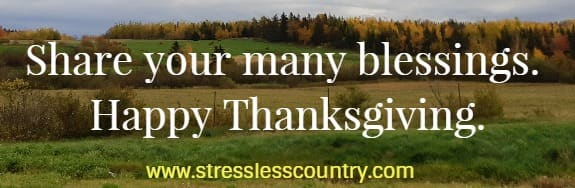 Share your many blessings.  Happy Thanksgiving.