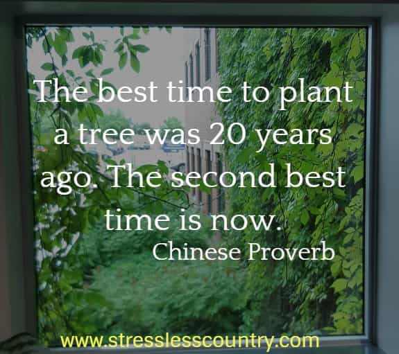 The best time to plant a tree was 20 years ago. The second best time is now.  Chinese Proverb