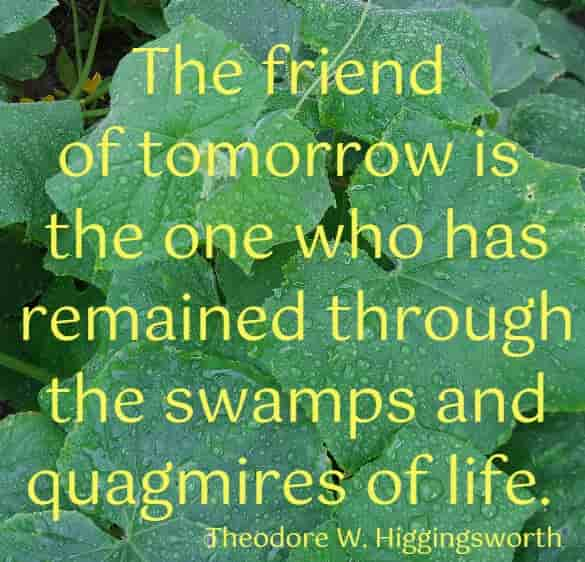 The friend of tomorrow is the one who has ...