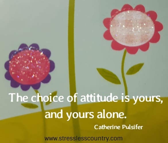 the choice of attitude is yours