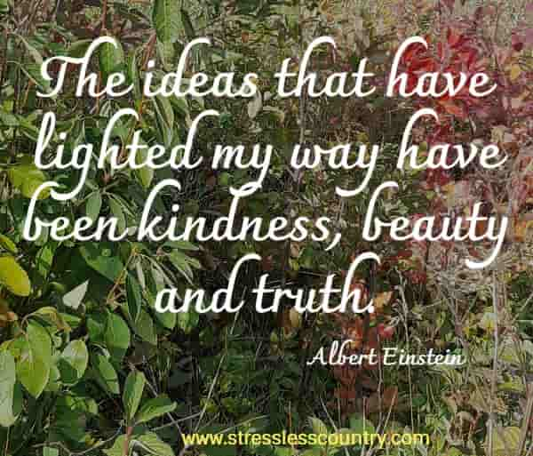 The ideas that have lighted my way have been kindness, beauty and truth. Albert Einstein