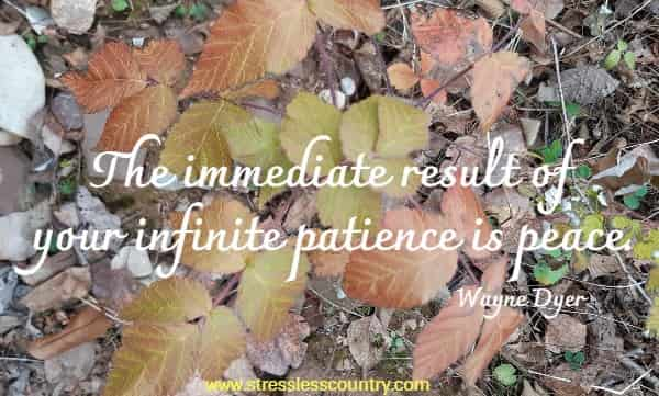 The immediate result of your infinite patience is peace.