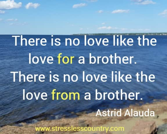 a brothers love quotes