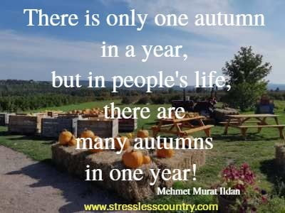 motivating fall quotes