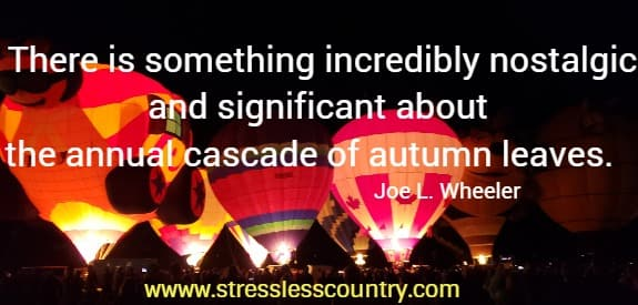 amazing fall leaves quotes