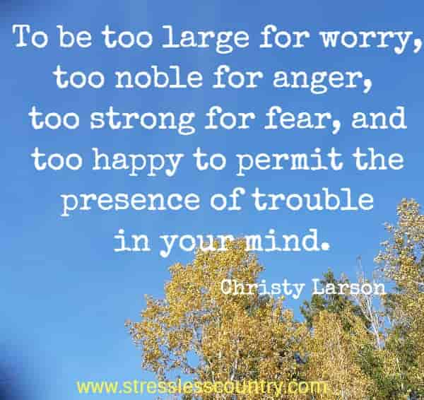To be too large for worry, too noble for anger, too strong for fear, and too happy to permit the presence of trouble in your mind.
